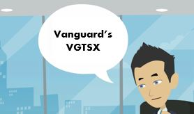 Vanguard VGTSX Review: 20 Key Things You Should Know About This Mutual Fund